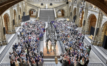 Dippy the Diplodocus is coming to town next year.