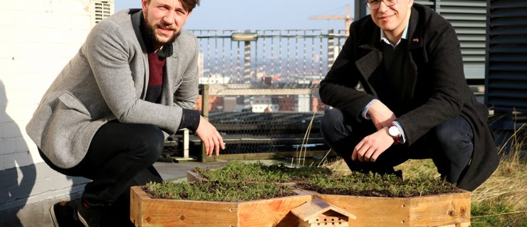 First rooftop bee garden in the Colmore Business District is creating a buzz among workers and visitors.