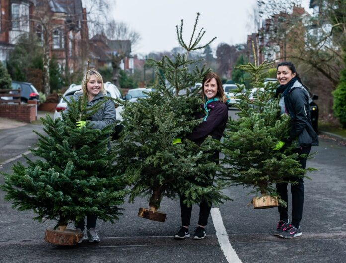 Volunteers collecting trees during Birmingham St Mary's Treecycling weekend
